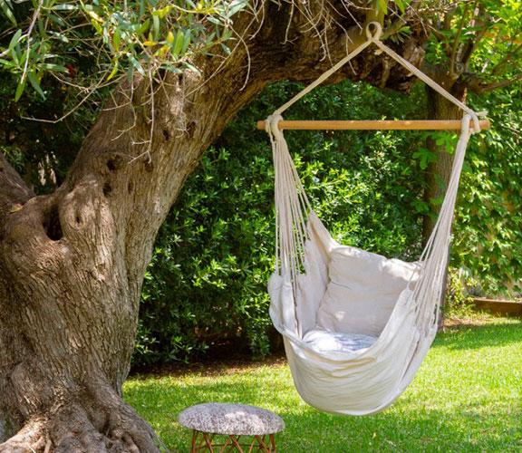 Sillas colgantes en el árbol